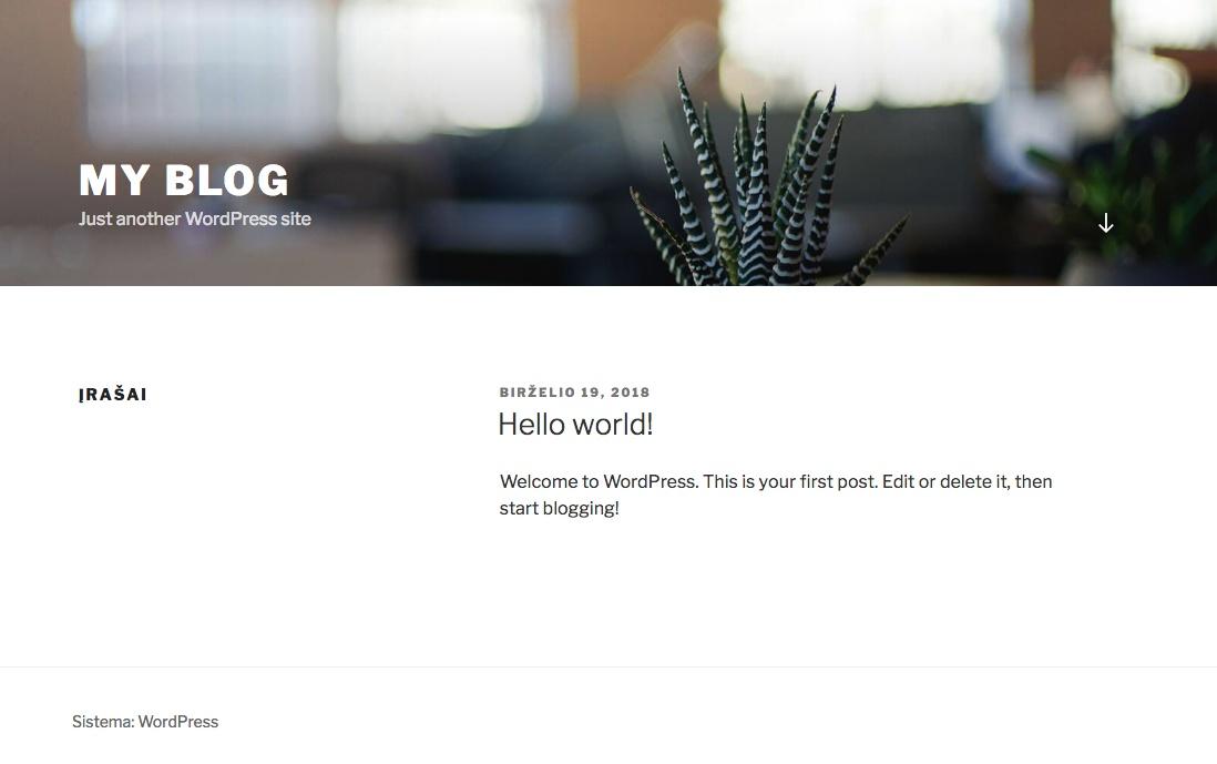 Naujai sudiegtas WordPress dizainas