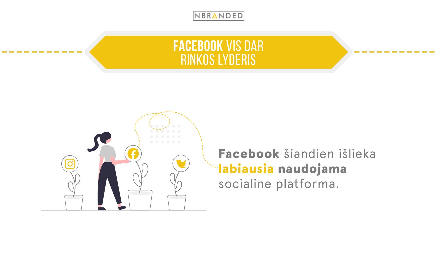 facebook rinkos lyderis